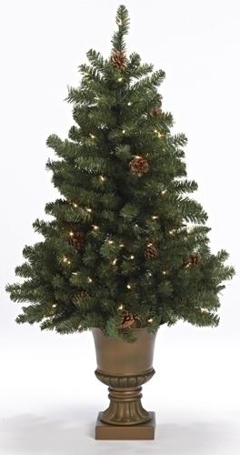 4' Fremont Topiary Tree 100Lt
