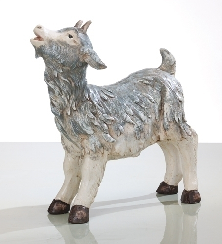 50-inch Little Goat Fig