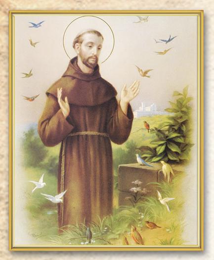 St Francis 8X10 Plaque