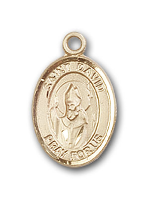 14K Gold St. David of Wales Pendant