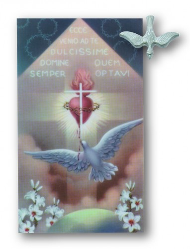 Holy Spirit Pin/Prayer Card
